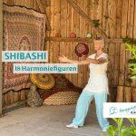 Shibashi - 18 Harmoniefiguren - Online Videokurs