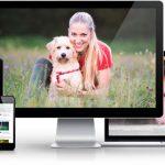 Conny Sporrer - Online Hundeschule